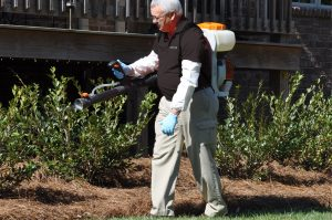 Mosquito Control Outside