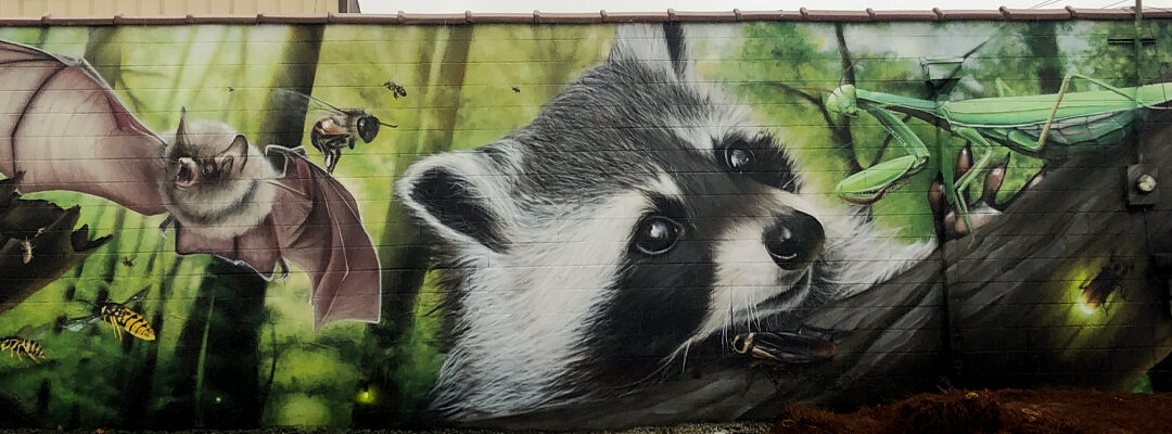 "Local Street Artist ""JEKS"" Transform PMi Greensboro Office with 60-foot Mural"