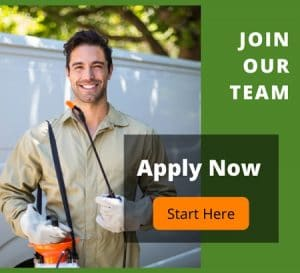 Join PMI Team
